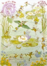 Postkarte Fairies and Waterlilies
